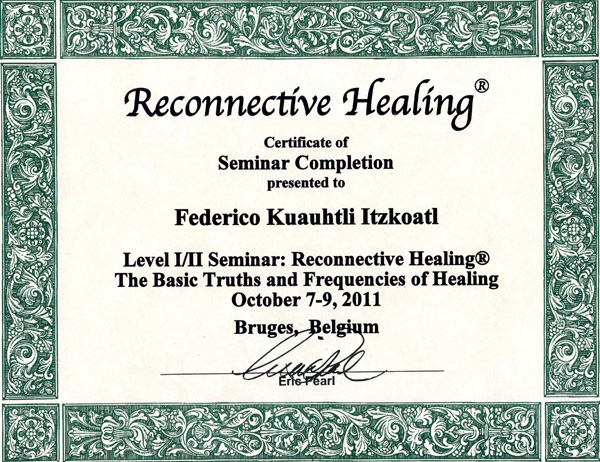 Reconnective Healing In Brussels With Osadhi